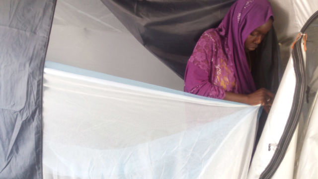 Woman in a tent hangs a mosquito net across the tent